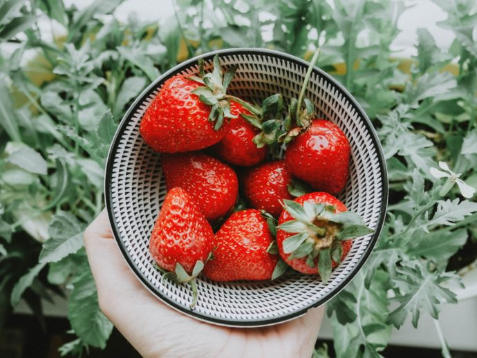 How to save your summer harvest